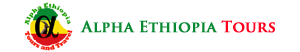 website design company in Ethiopia - alpha ethiopia tours